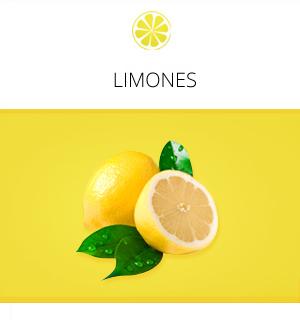 limon-inicio