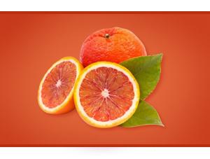 zumo concentrado naranja sanguina