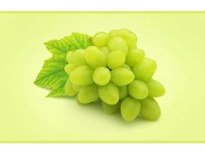 zumo concentrado uva blanca