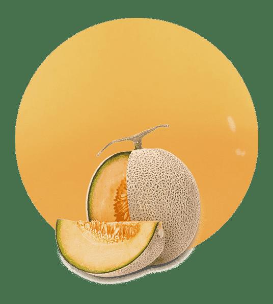 zumo de melon cantalupo
