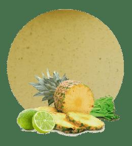 Concentrado de Apio, Piña y Lima
