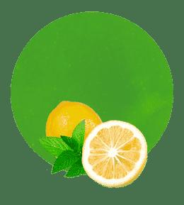 Concentrado de Limón y Menta