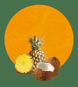 Concentrado de piña y coco