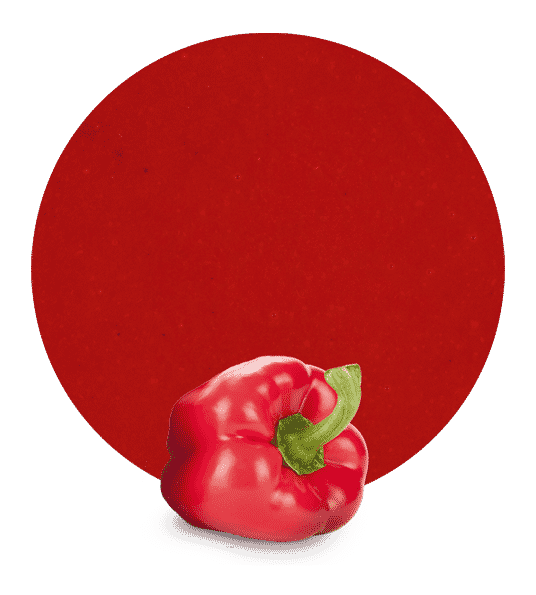 Puré de pimiento rojo