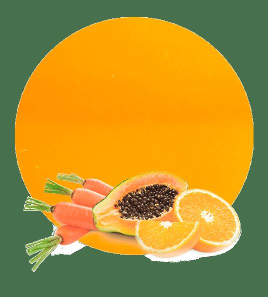 Concentrado de Naranja, Zanahoria y Papaya