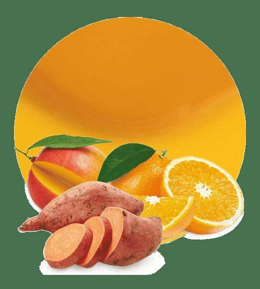 de Batata, Naranja y Mango