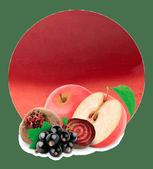 Concentrado de Manzana, Remolacha y Grosella Negra