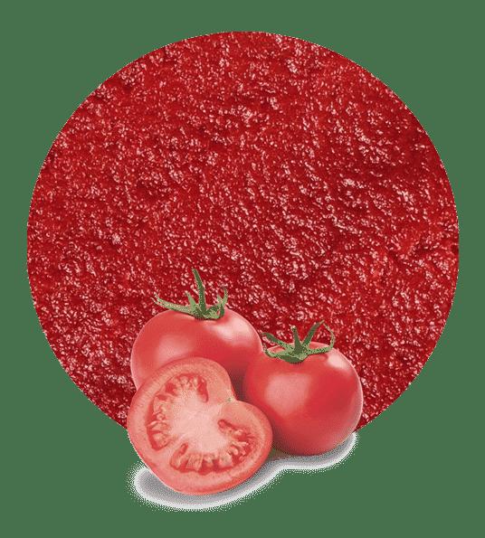 pasta de tomate concentrada