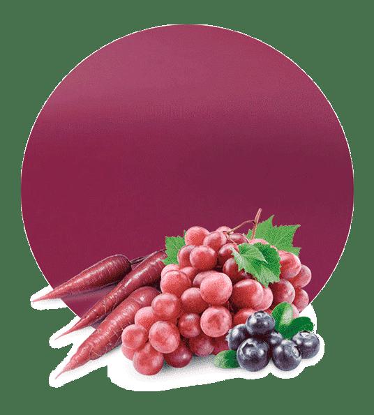 concentrado de uva, arándano, zanahoria morada y col morada